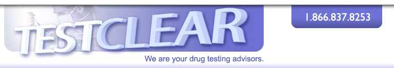 Testclear - We are your drug testing advisors